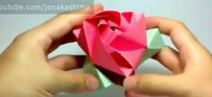 магическая роза